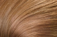 Hair Color Chart With 68 Shades From Loreal, Clairol, Garnier ...