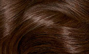 Hair Color Chart With 68 Shades From Loreal Clairol Garnier  Hairstylescut